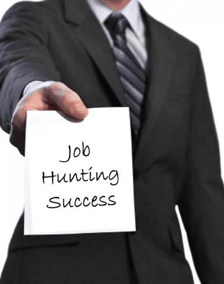 Job Hunting Success ebook